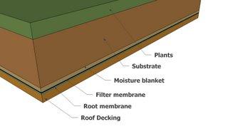 extensive green roof