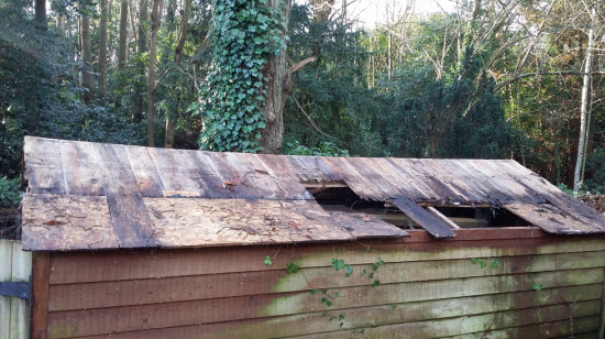 My Shed Repair Service Will Return Your Shed Back To A Dry ...