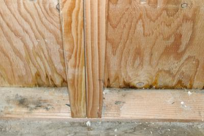 Shed Siding Leaking And Wicking