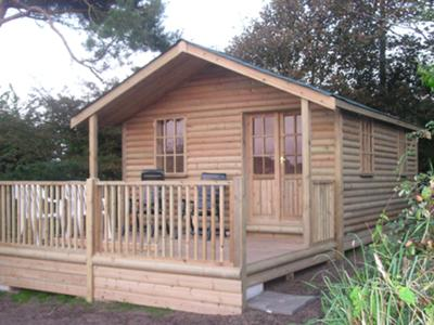Boards used for shed roof
