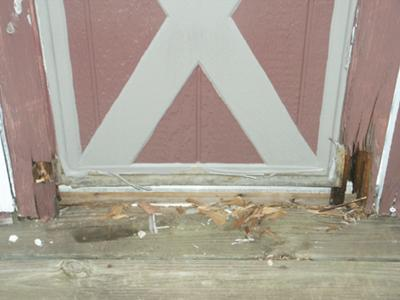 My Rotten Shed Door