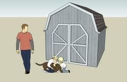 shed roof design 4